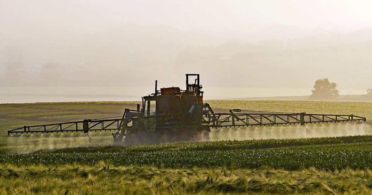 Pestisit Nedir? Pestisit İlacı Ne İşe Yarar?
