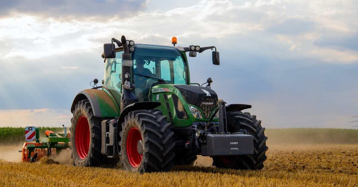 Buğday Yetiştiriciliği Nasıl Yapılır?
