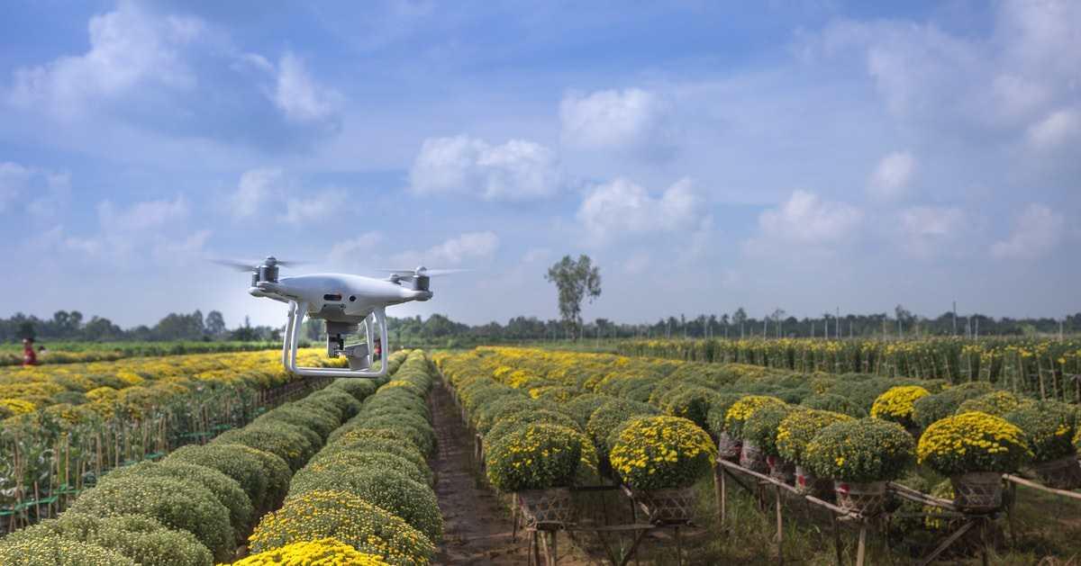 Küçük Çiftlikler İçin Yenilikçi Agritech Önerileri